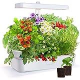 GrowLED 10-Pod Indoor Garden Germination Kit, Hydroponic Growing System, Food Grade Material Indoor Herb Garden, Nutrients Pr