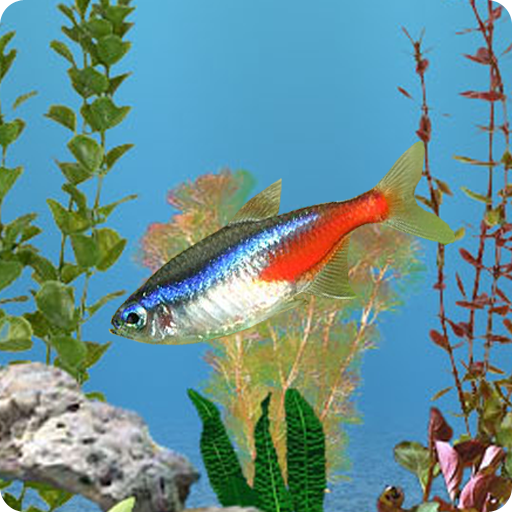 Anipet Freshwater Aquarium Live Wallpaper