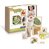 Guidecraft Treasure Blocks - Clear: Smooth Wooden Observation Stacking Blocks with Transparent Windows, Educational Toy…