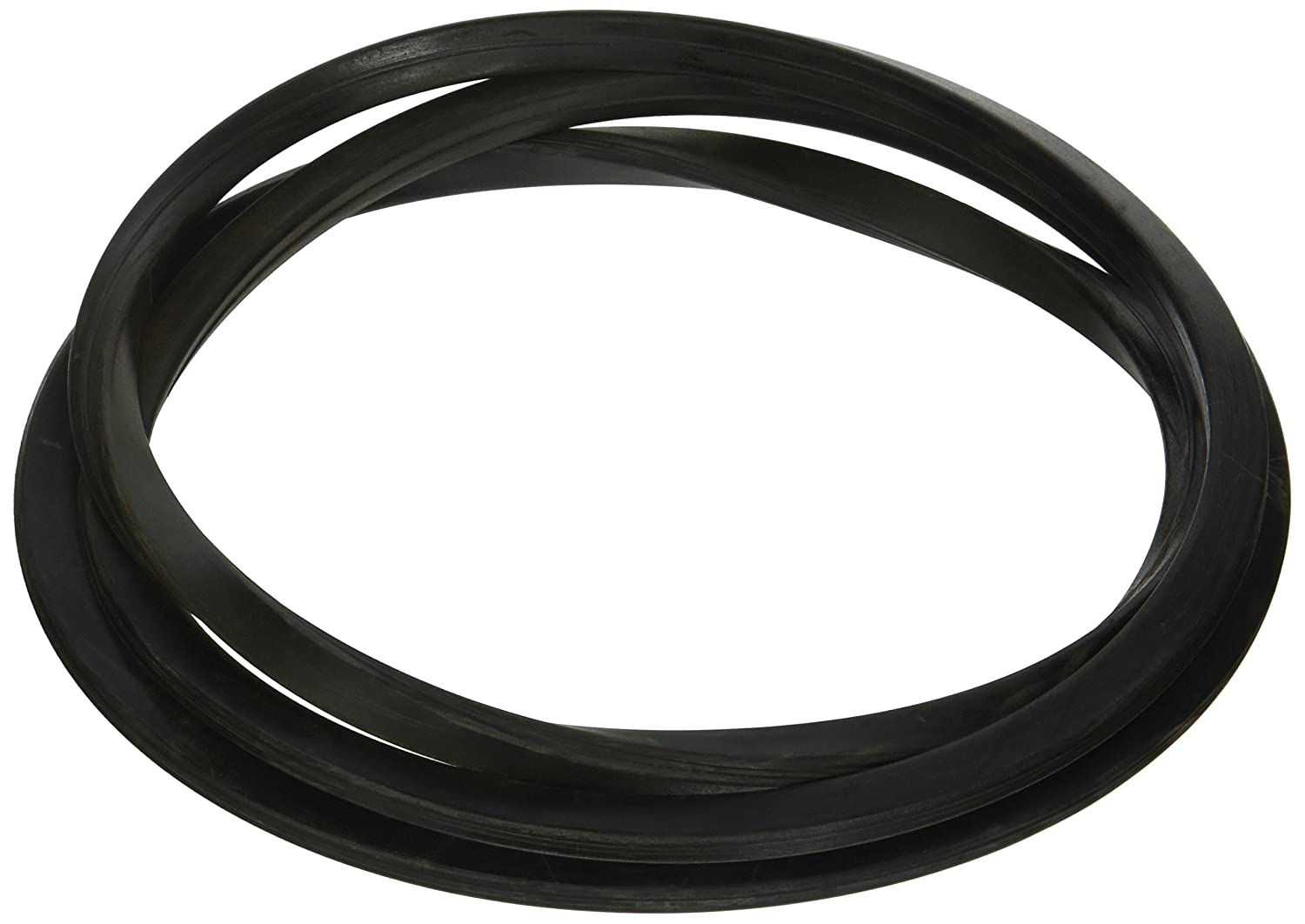 Pentair 195008 O-Ring Tank Replacement FNS Pool and Spa D.E. Filter