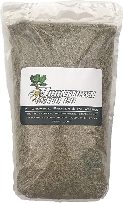 10 Lbs JUMBO LADINO WHITE CLOVER SEED For Food Plot Larger Leaves Faster Growing