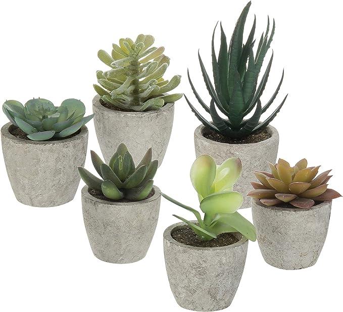 Macetas para cactushttps://amzn.to/34tZuk1