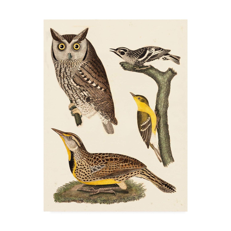 Trademark Fine Art Owls III by Alexander Wilson, 14x19, 19x14