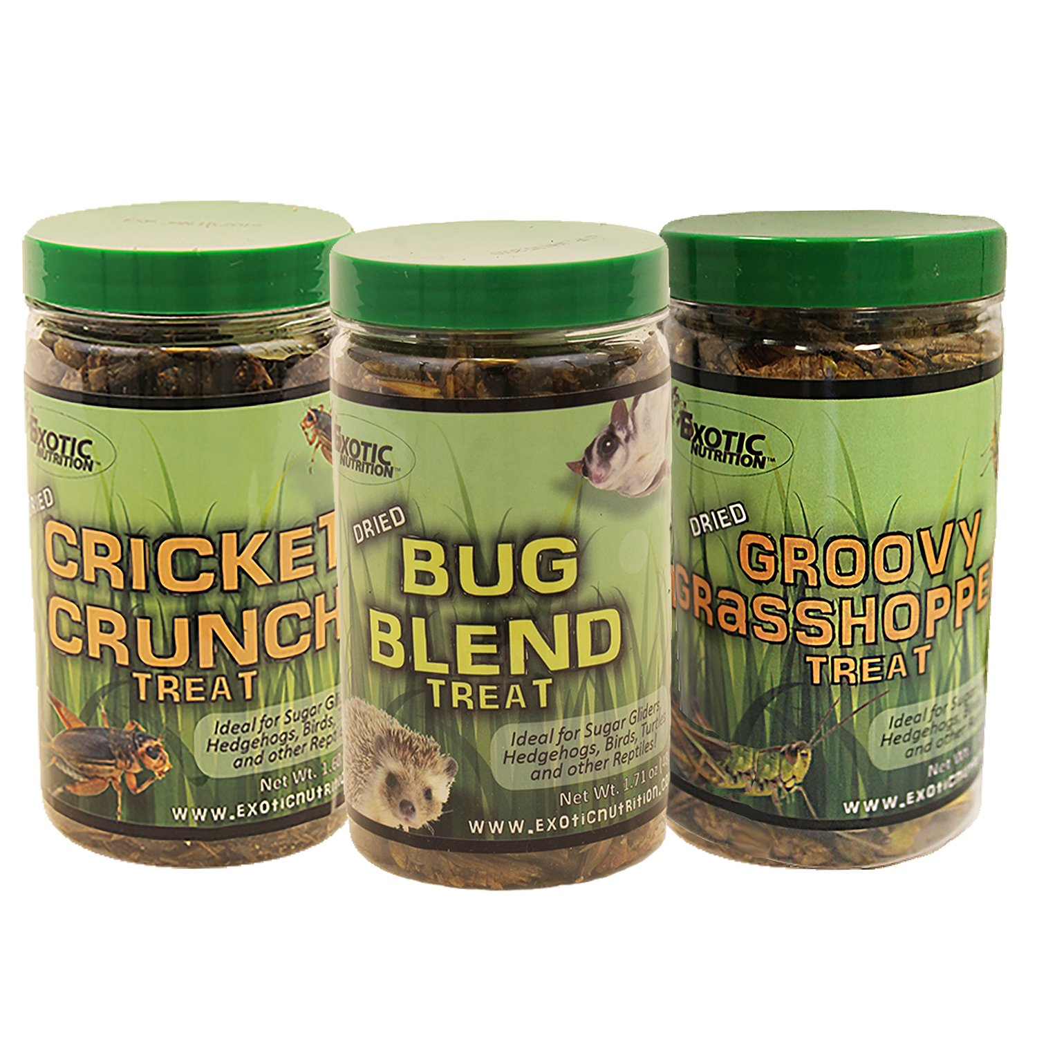 Exotic Nutrition Dried Insect 3 Pack - Crickets, Grasshoppers, Mealworms