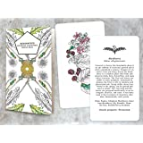 Hedgewitch Botanical Flashcards Oracle Deck