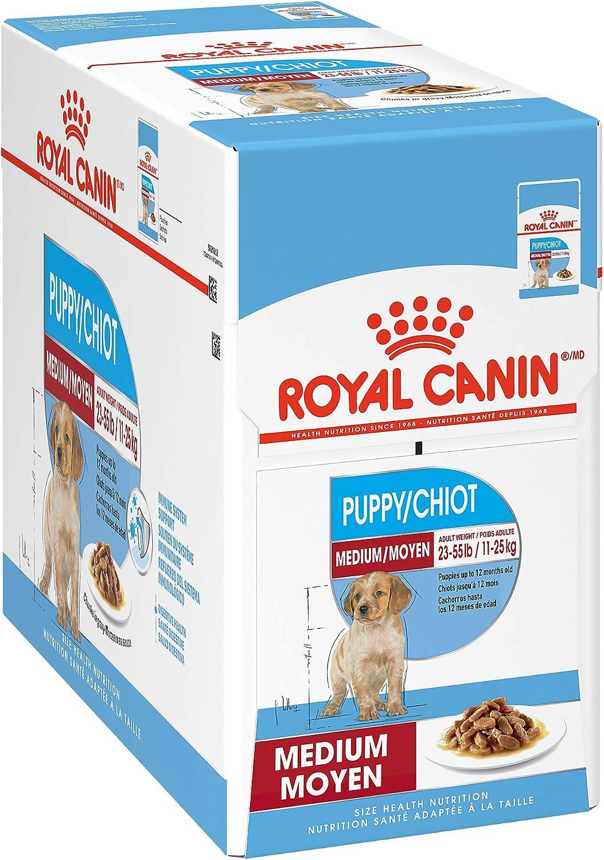 Royal Canin Size Health Nutrition Medium Breed Chunks in Gravy Pouch Dog Food