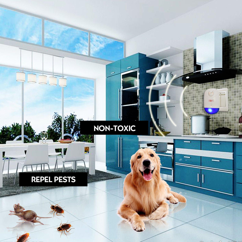 Amazon.com : Ultrasonic Pest Repeller 6 Packs - Home Pest Control ...