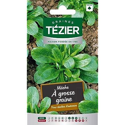 Seed Bag Big Seed mash Tezier : Garden & Outdoor