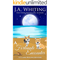 A Fortunate Encounter (A Claire Rollins Mystery Book 6)