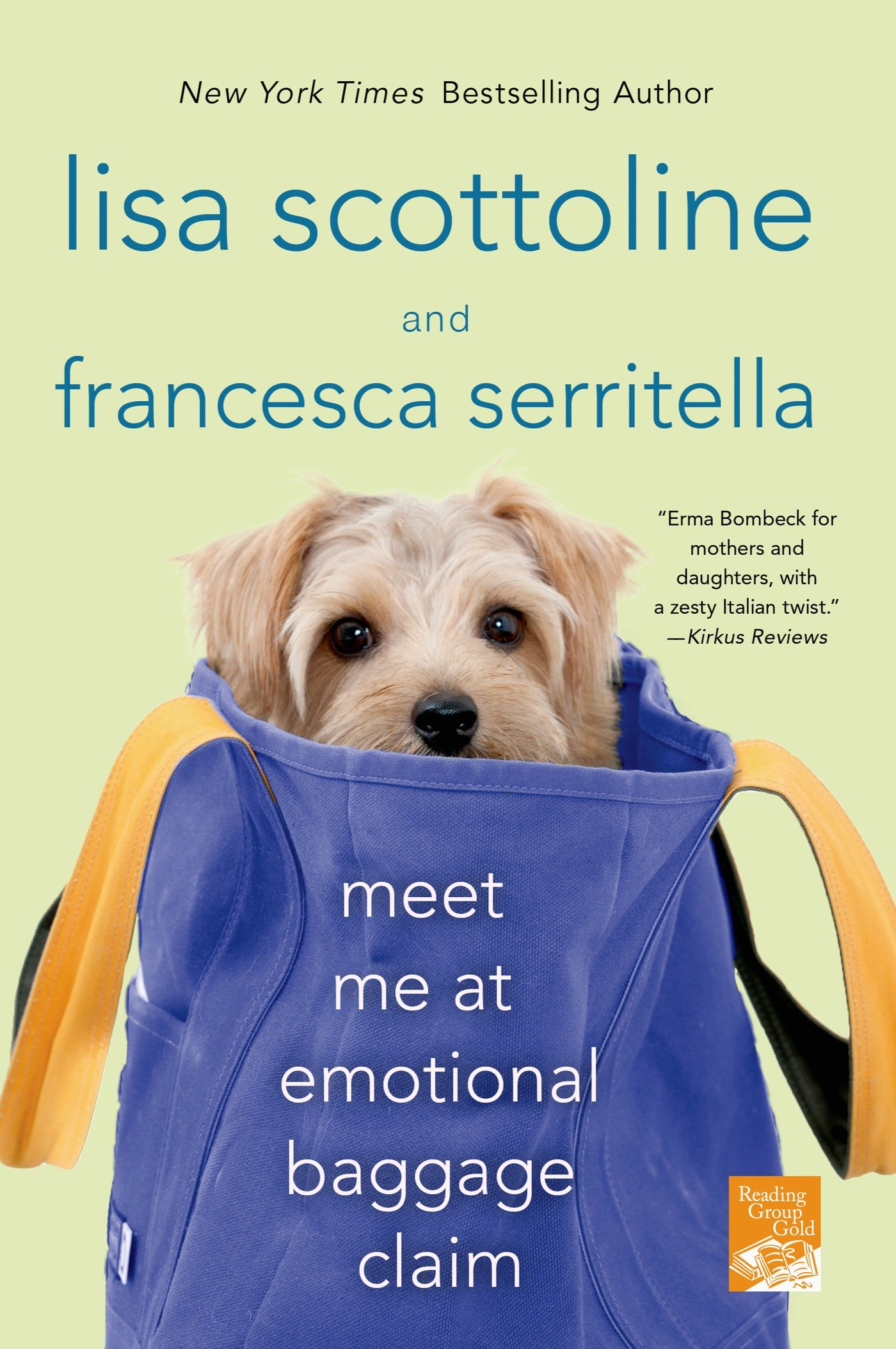 Meet Me at Emotional Baggage Claim (The Amazing Adventures of an Ordinary Woman) PDF