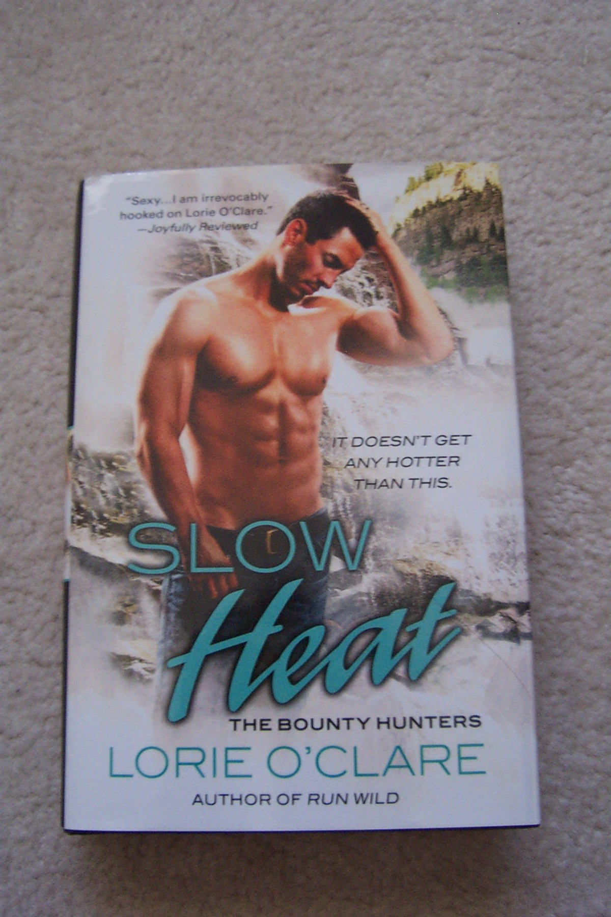 Download Slow Heat (The Bounty Hunters) pdf