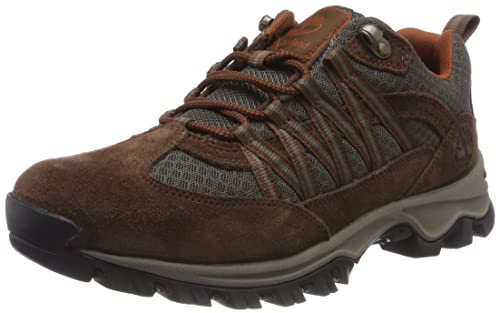 2429f84bf5a Timberland Men's Mt. Maddsen Lite Low