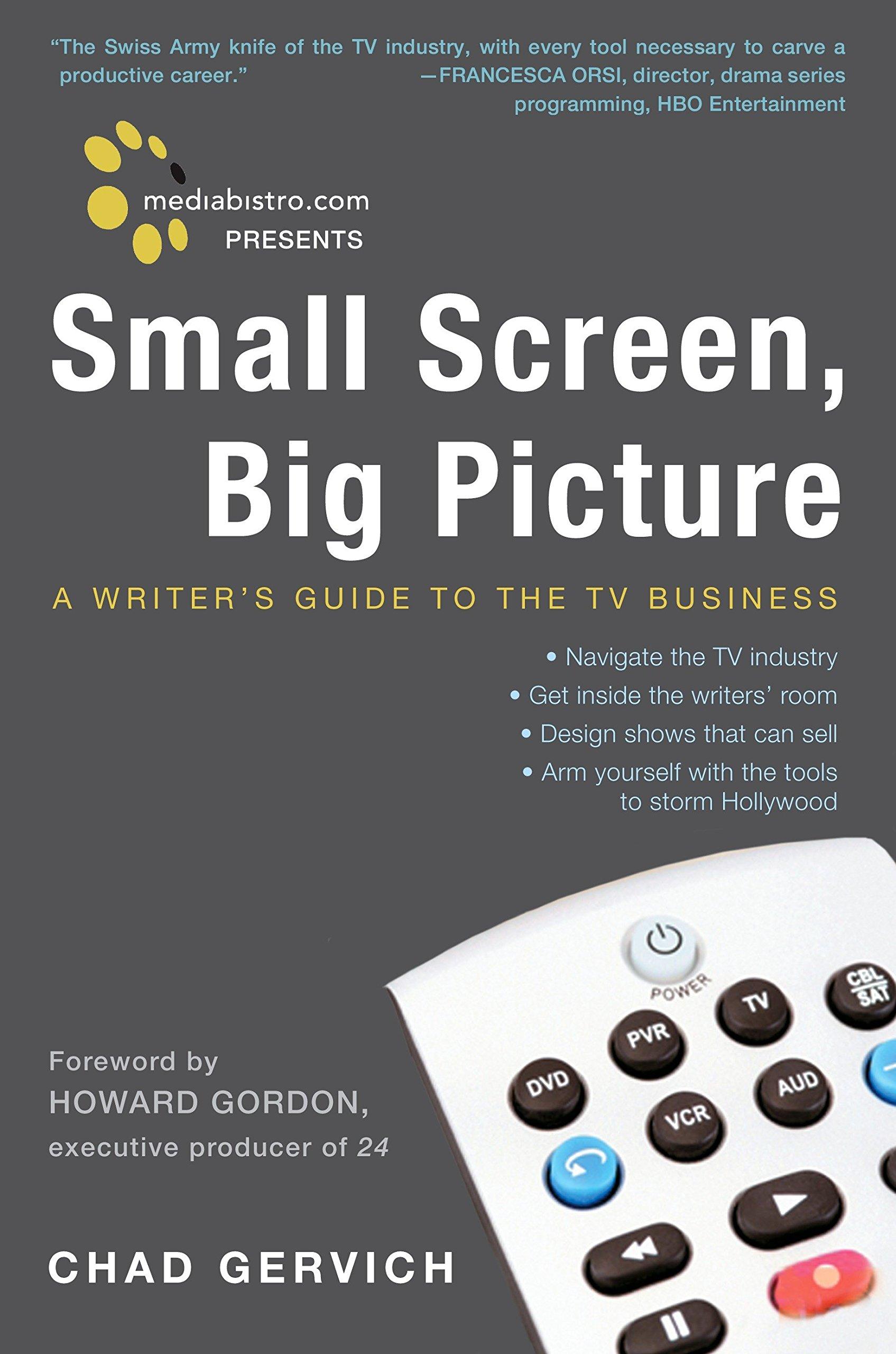Mediabistro.com Presents Small Screen, Big Picture: A Writer's Guide to the  TV Business: Chad Gervich: 9780307395313: Amazon.com: Books
