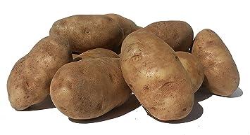 Amazon Potatoes Fresh Idaho Russet And Red Produce Bundle Grocery Gourmet Food