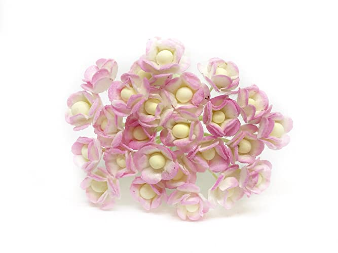 Amazon 1cm Pink White Paper Flowers Mulberry Paper Flowers