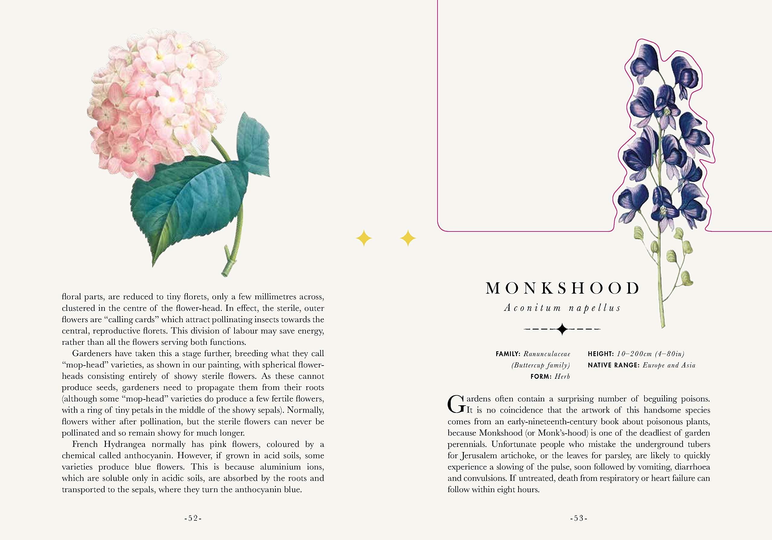The Flower Garden Paperscapes Amazon Michael Scott