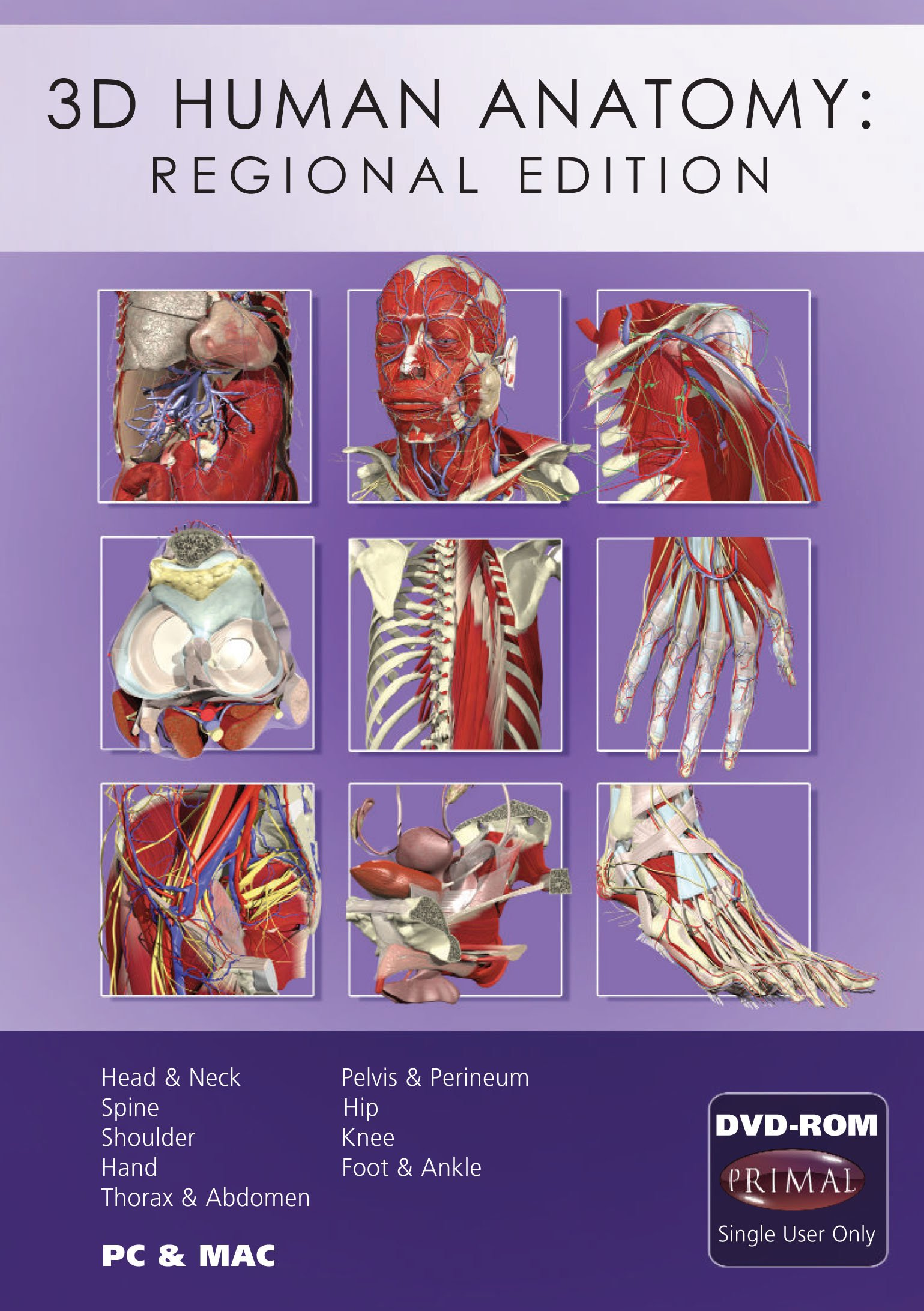 3d Human Anatomy Regional Edition Primal Pictures 9781907061080