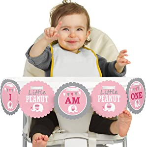 Big Dot of Happiness Pink Elephant 1rst Birthday Highchair Decor - I Am One - First Birthday High Chair Banner