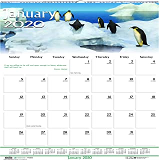 product image for House of Doolittle 2020 Monthly Wall Calendar, Earthscapes Wildlife, 12 x 12 Inches, January - December (HOD3731-20)