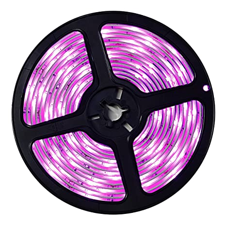 Amazon wigbow pink led strip light lit waterproof 164ft 5m wigbow pink led strip light litwaterproof 164ft 5m 150 leds pink rope lights aloadofball Images
