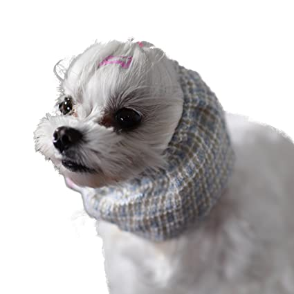 Snoodie Snood Headband Collar For Maltese Yorkie Small Dog Maltese Snood Headband Maltese Obsession Medium Size