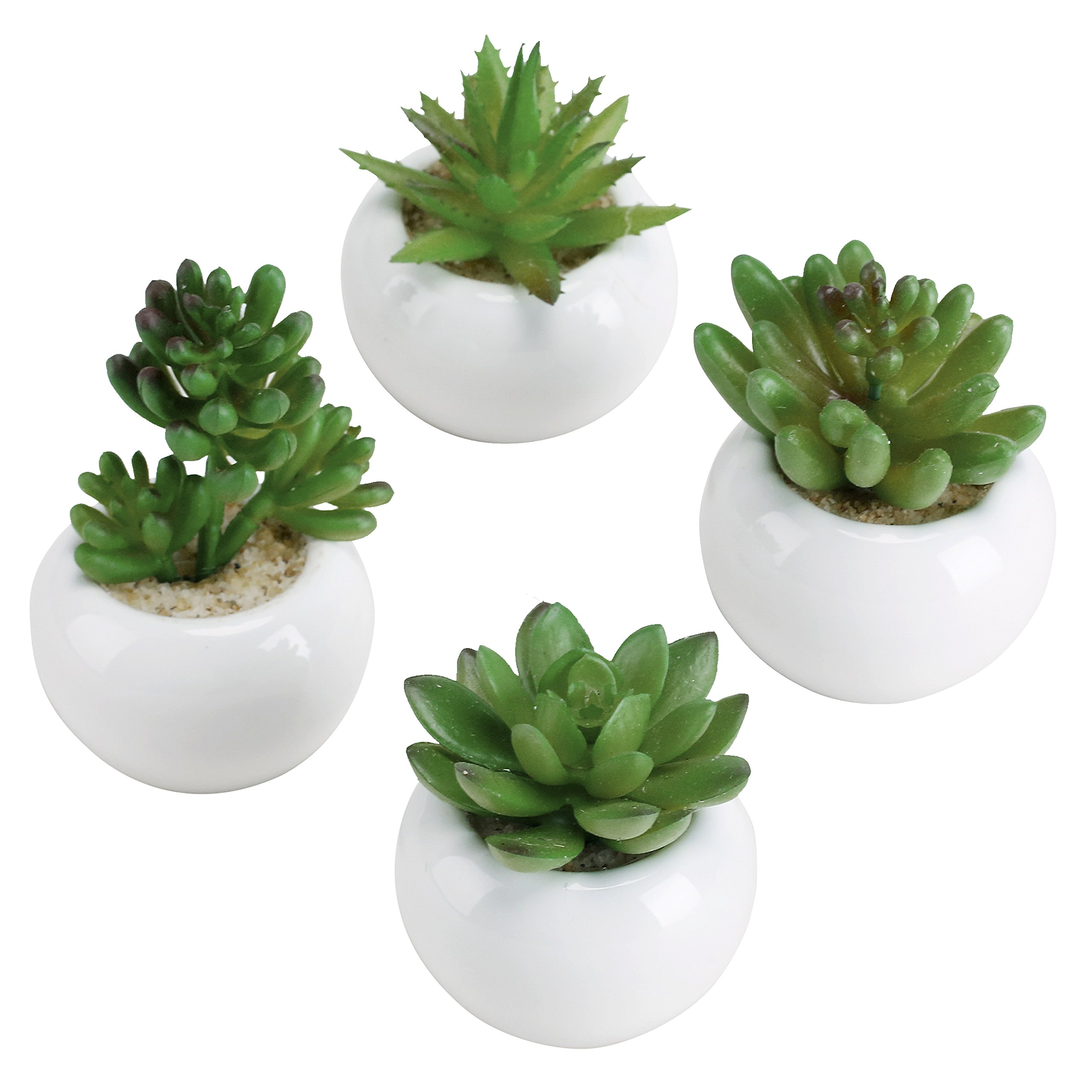 3-inch Mixed Green Artificial Succulent Plants in Round Glazed White Ceramic Pots, Set of 4 by MyGift (Image #1)