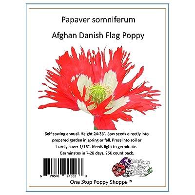 Poppy Danish Flag 250 Seeds - Papaver Somniferum. One Stop Poppy Shoppe Brand. : Poppy Plants : Garden & Outdoor