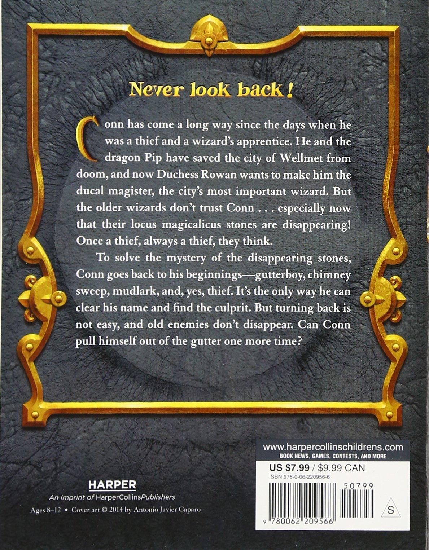 The Magic Thief: Home: Sarah Prineas, Antonio Javier Caparo: 9780062209566:  Amazon.com: Books