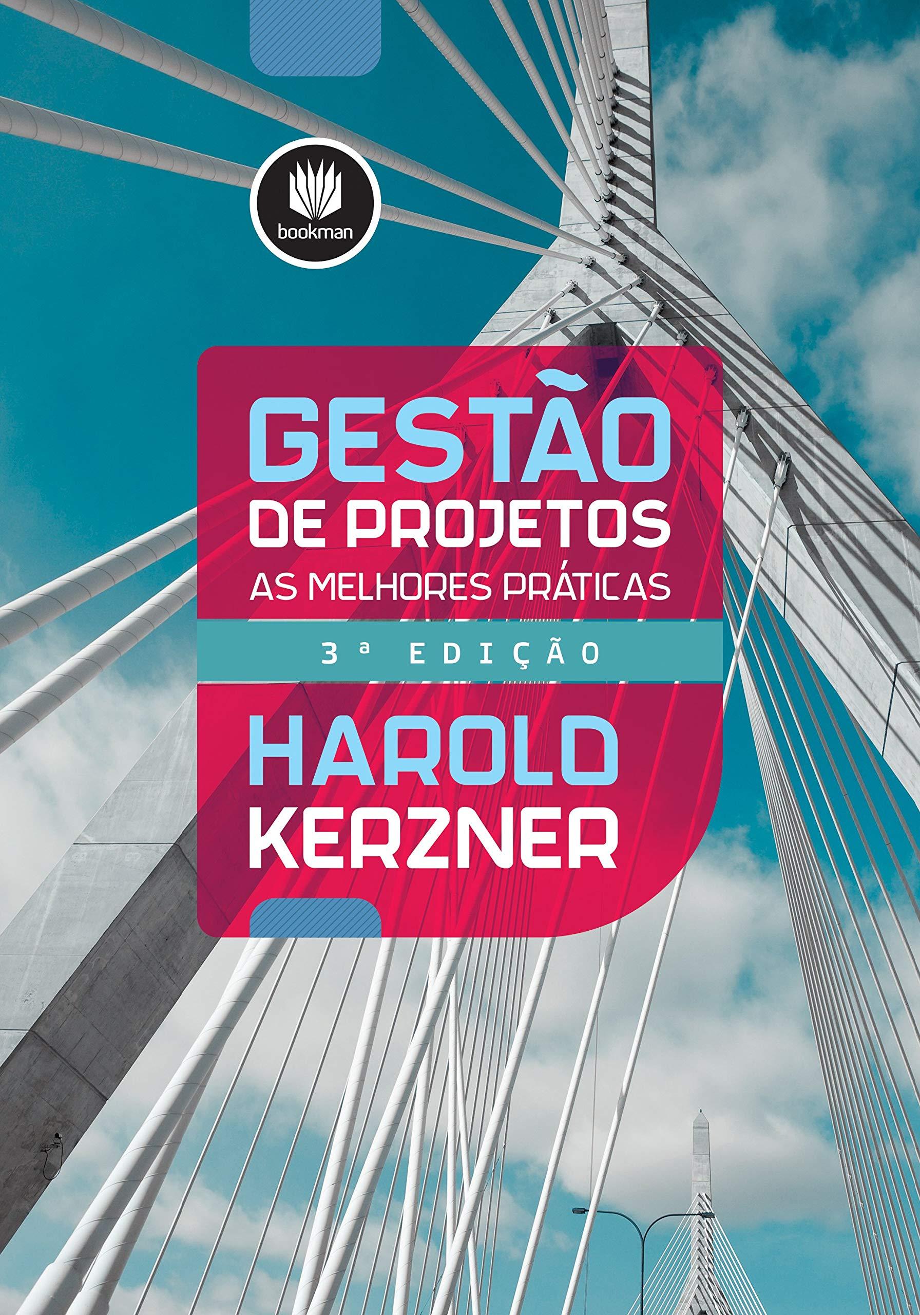 Read Online Gestao de Projetos: As Melhores Praticas pdf