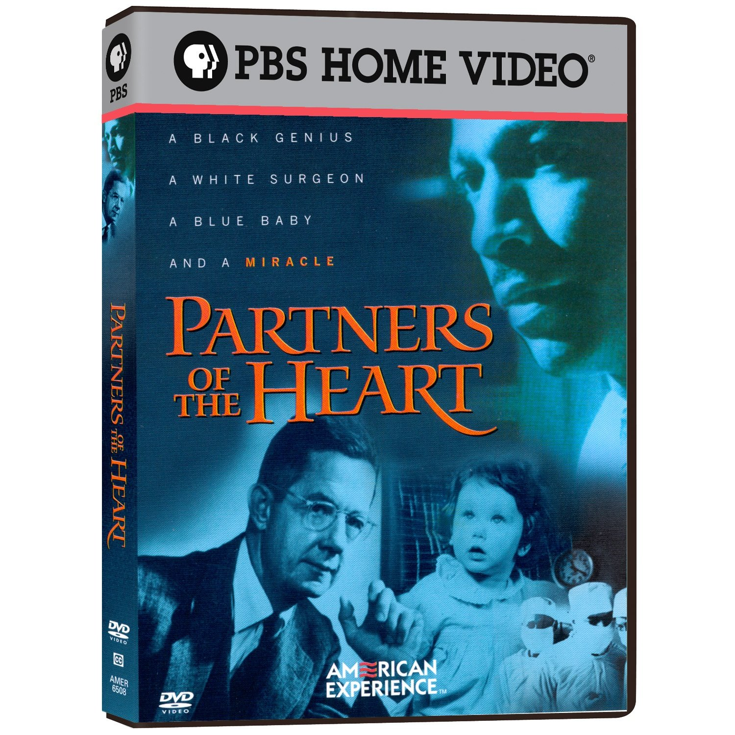 American Experience - Partners Of The Heart by Pbs (Direct)