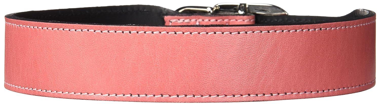 Hartman & pink 1394 Plain Nickel Plated Dog Collar, 18 to 20-Inch, Petal Pink