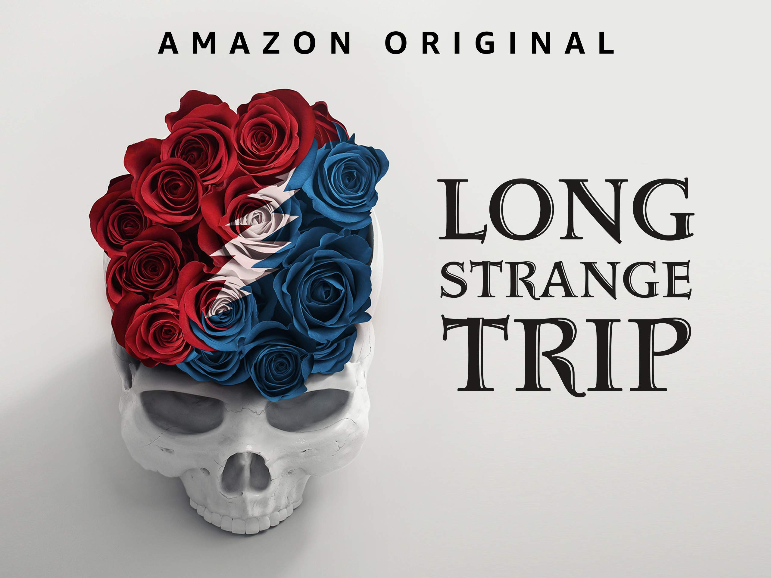 Image result for Long strange Trip