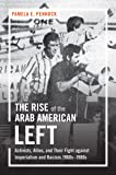 The Rise of the Arab American Left: Activists, Allies, and Their Fight against Imperialism and Racism, 1960s–1980s (Justice, Power, and Politics)