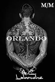 Orlando: M/M (Combatente Livro 4)