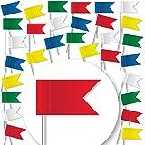30 Stück Markierungsfahnen - GEMISCHT - Markierungsfähnchen für Pinnwand u. Weltkarten-Landkarten