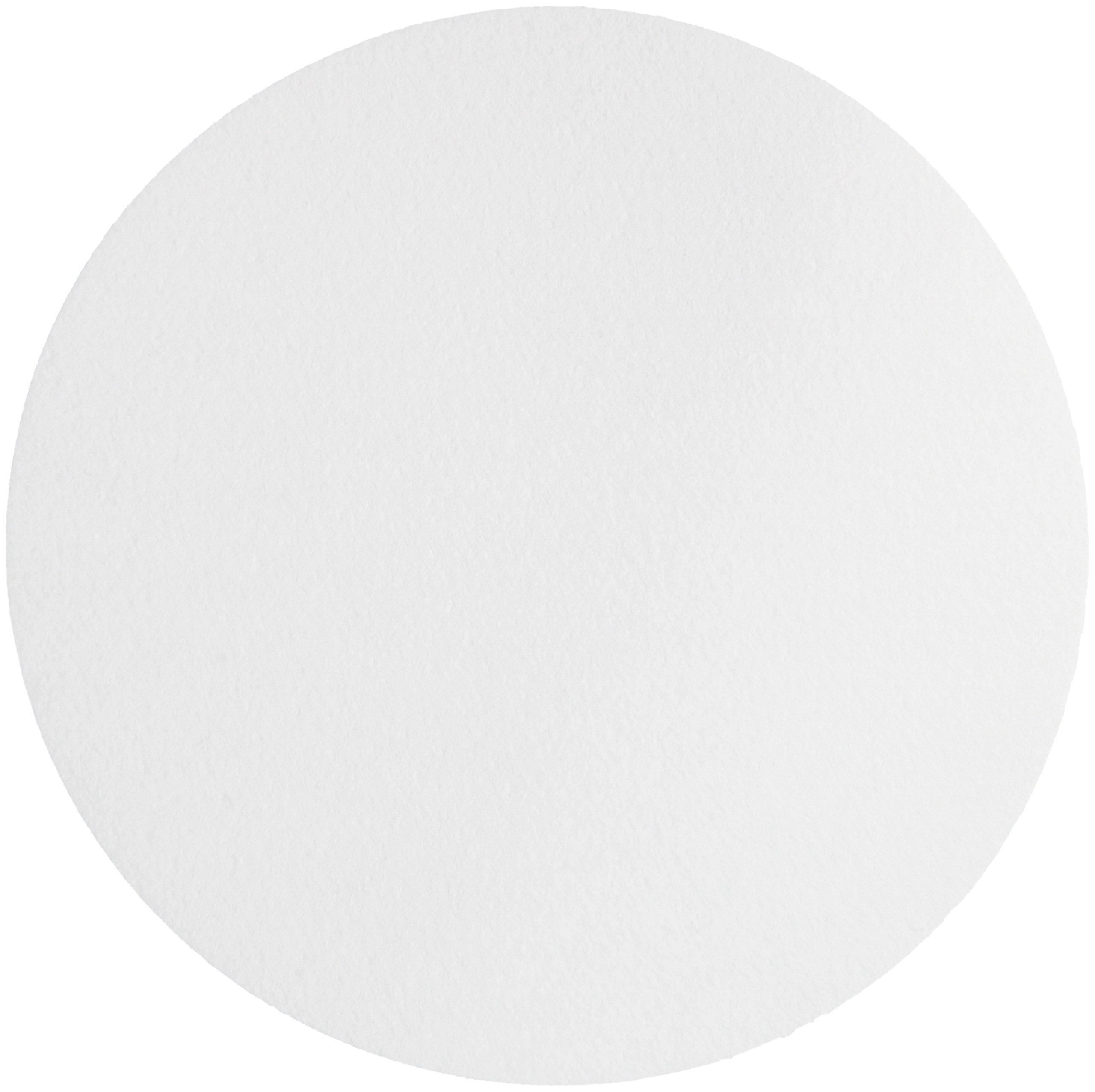 Whatman 1001-6508 Quantitative Filter Paper Circles, 11 Micron, 10.5 s/100mL/sq inch Flow Rate, Grade 1, 10mm Diameter (Pack of 100) by Whatman