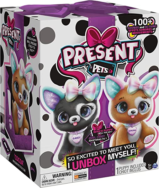 Present Pets interactive pet toy for kids in package