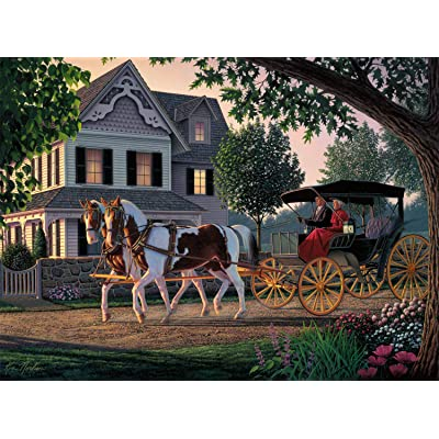 Buffalo Games - Kim Norlien - Home Sweet Home - 1000 Piece Jigsaw Puzzle: Toys & Games