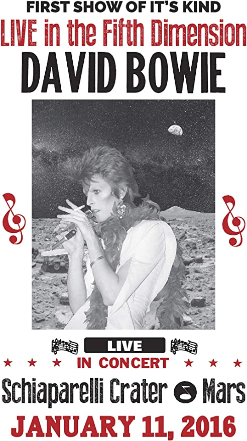 Vintage David Bowie Poster Art Print Black /& White Card or Canvas