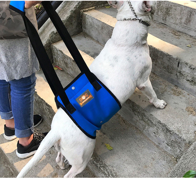 arnes de soporte con asa  perros mayores o lesionados-Grande