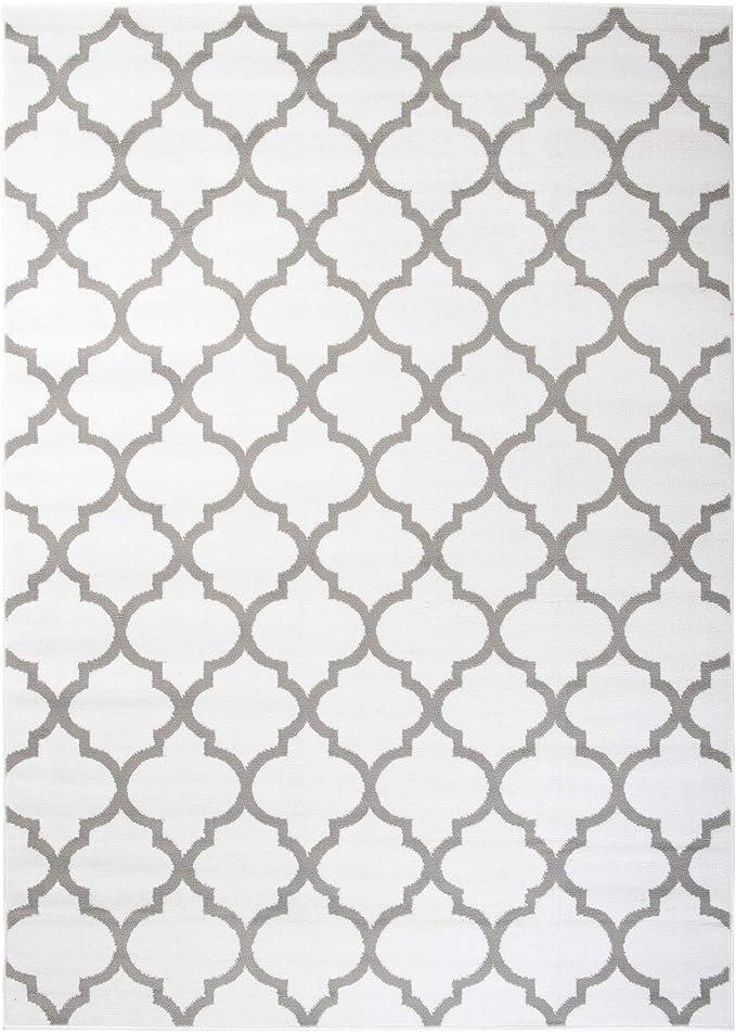 Tapiso Fire Tapis de Salon Chambre Design Moderne Blanc Gris Marocain Optique G/éom/étrique Treillis Fin 80 x 150 cm