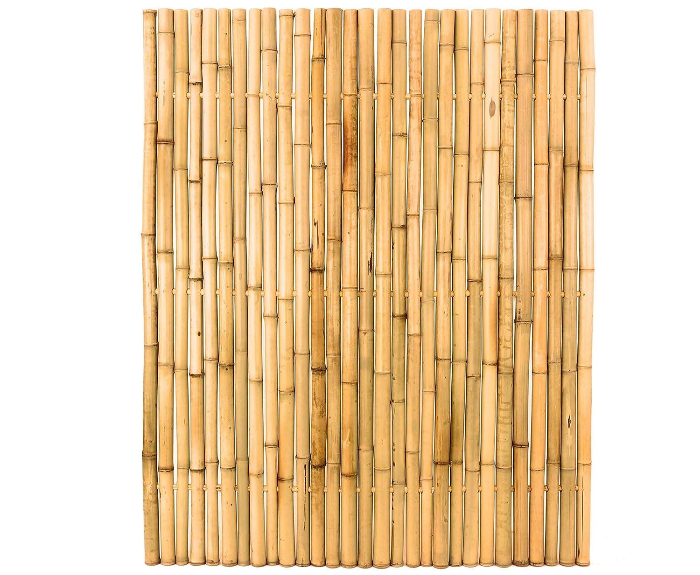 Bambuszaun Moso Gelb Starr Mittels Bambus Verbunden Gebleicht