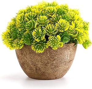 WOODWORD Artificial Plants for Room Decor - Potted Fake Plants for Home Decor - Face Plants in Pots for Bathroom Decor Office Decor