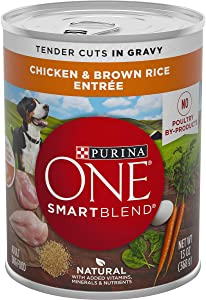 Purina ONE SmartBlend Canned Wet Dog Food