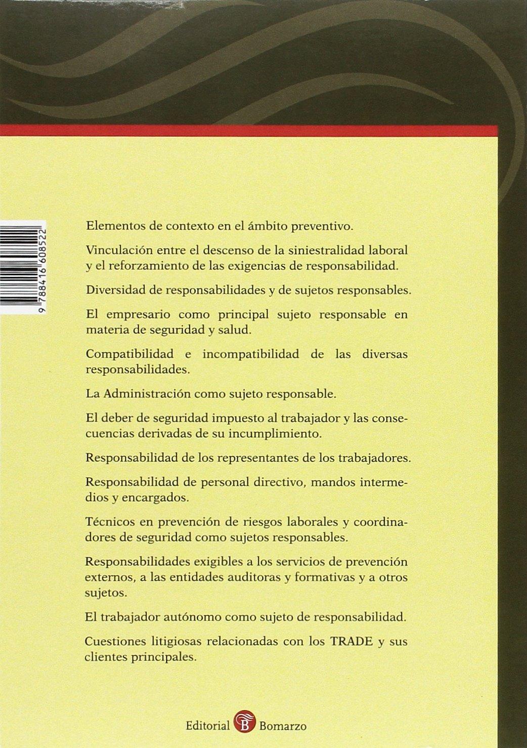 Sujetos responsables de los incumplimientos en materia preventica: María de los Reyes Martínez Barroso: 9788416608522: Amazon.com: Books