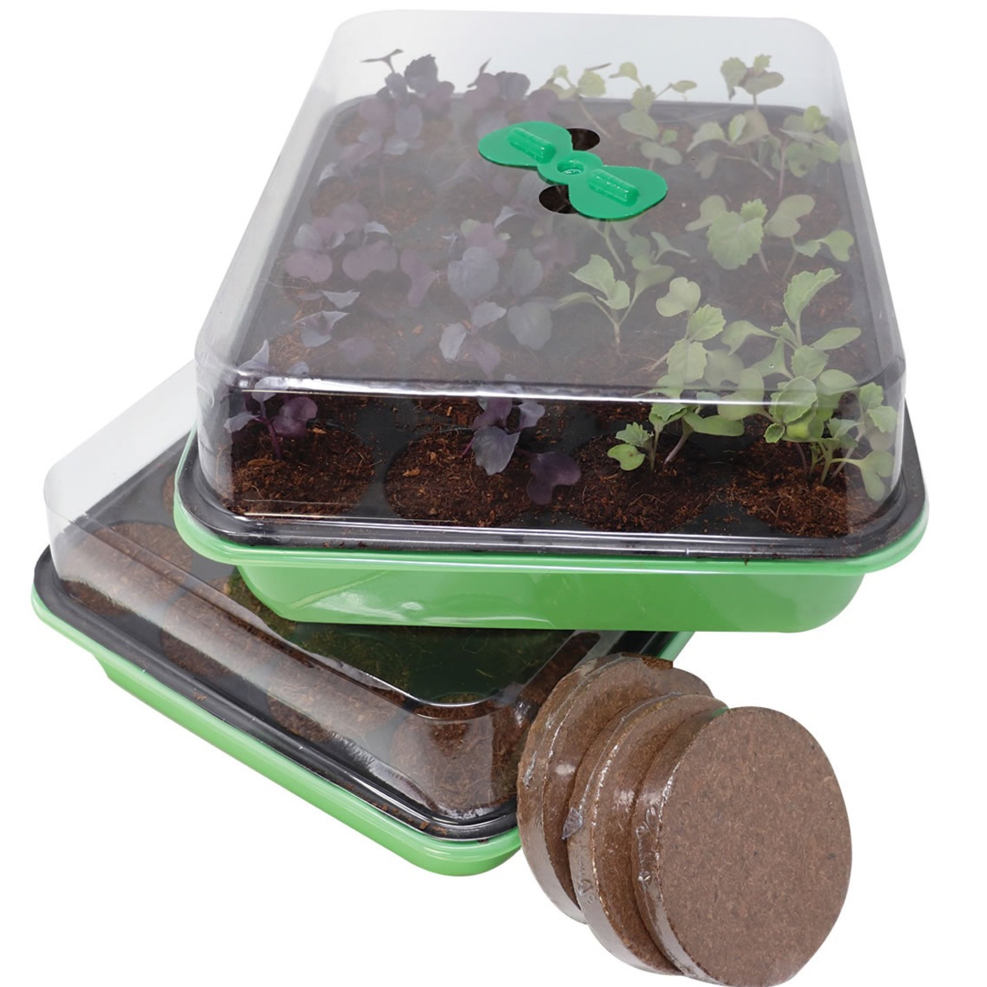 Two 20 Cavity Seed Germination Trays – Complete with Fiber Soil and Ventilated Greenhouse Covers. Grow Seedlings Near a Window Or Under Lights. Transfer Plants to Pots Or Garden. Sturdy and Reusable. by Window Garden