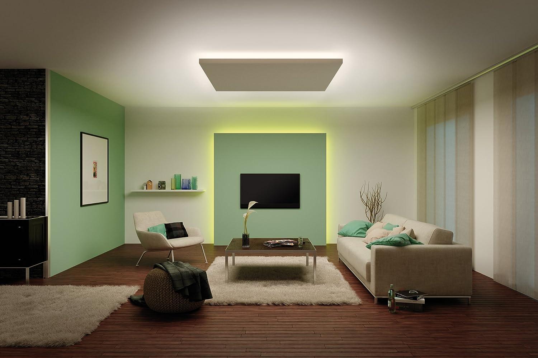 Paulmann Basic Set Warm White 20m expanded MAX. 20m Regulable Tira de LED  para Iluminación, Se Puede Cortar Y Autoadhesivo Integriert, 20 W,  Plateado,