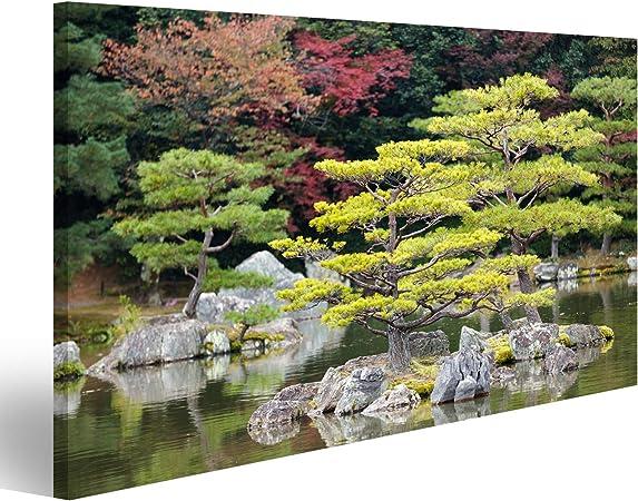 islandburner Cuadro Cuadros Jardín Zen japonés en el Parque del Templo kinkakuji Kyoto Genial y Muy Bonito! MQG: Amazon.es: Hogar