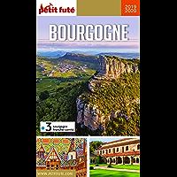 BOURGOGNE 2019 Petit Futé (GUIDES REGION) (French Edition)