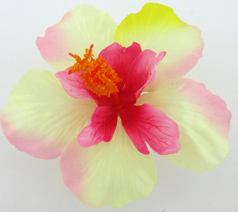Amazon 4 12 pink cream yellow hibiscus poly silk flower har amazon 4 12 pink cream yellow hibiscus poly silk flower har comb clothing izmirmasajfo